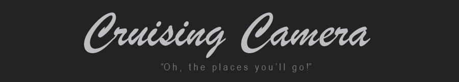 cruisingcamera.com logo